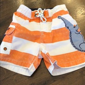 Gap Ssim Trunks size 12-18 w/appliqué gator